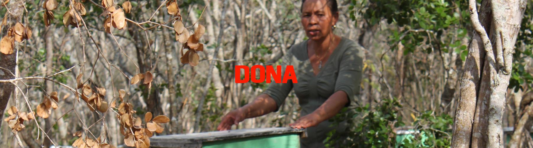 día del trabajo mujeres dona solidaridad cesal