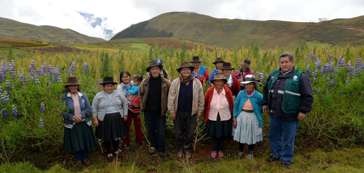 grupo de agricultores apurimac