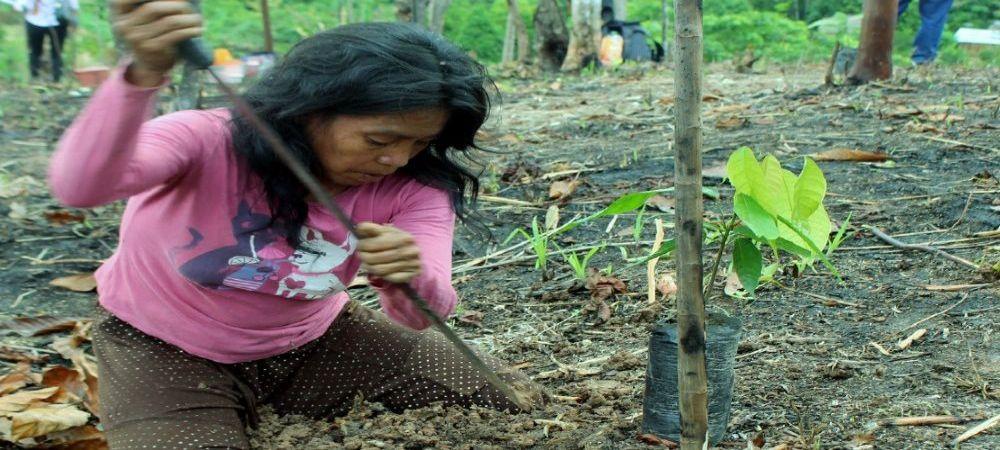mujer reforestación ucayali