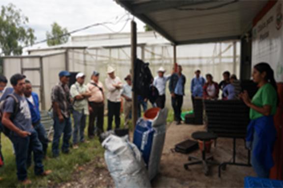 Grupo de personas capacitadas_occidente de Honduras_2018