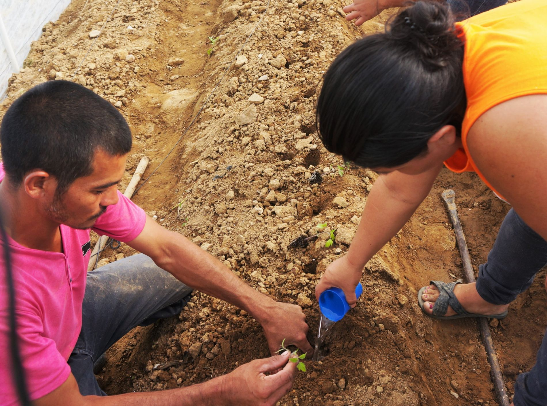 Beneficiarios convenio seguridad alimentaria Honduras