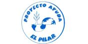 Proyecto Ayuda el Pilar