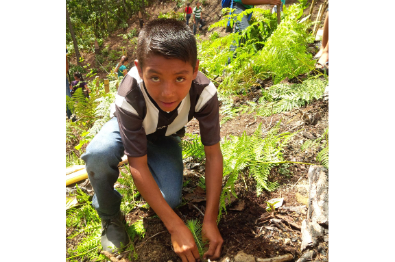 Niño beneficiario reforestando