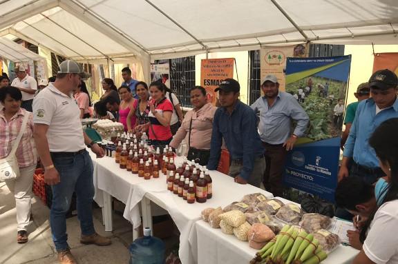 Productores de miel en II feria