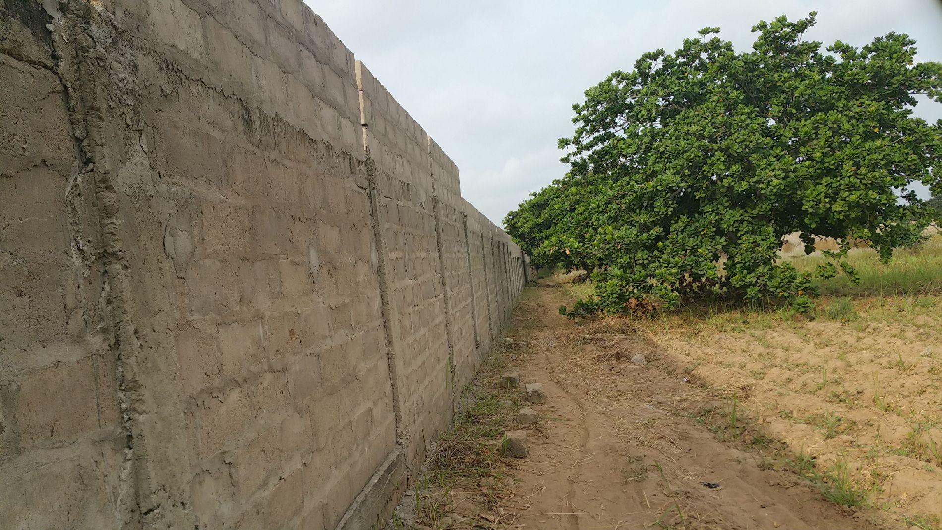 Muro Centro Dassa