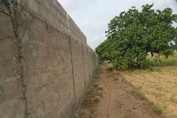 Muro perimetral Centro Dassa
