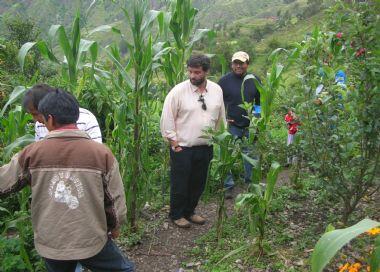 Impulso de la producción agropecuaria