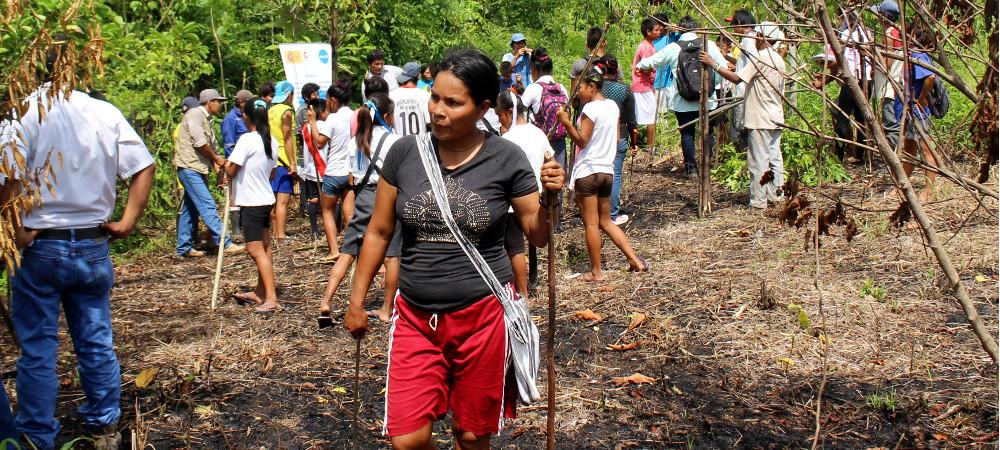 gobernanza ambiental ucayali