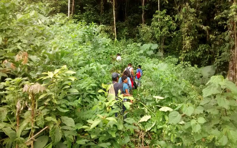 selva personas inventarios forestales ucayali