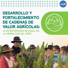 LIBRO Desarrollo y Fortalecimiento de Cadenas