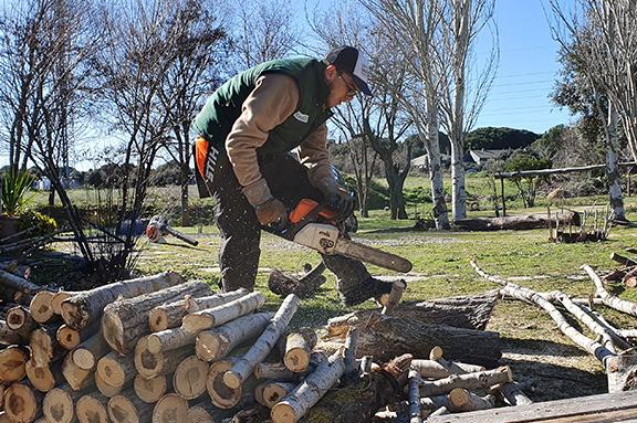 Nuevos cursos de formación para jóvenes de CESAL en Madrid