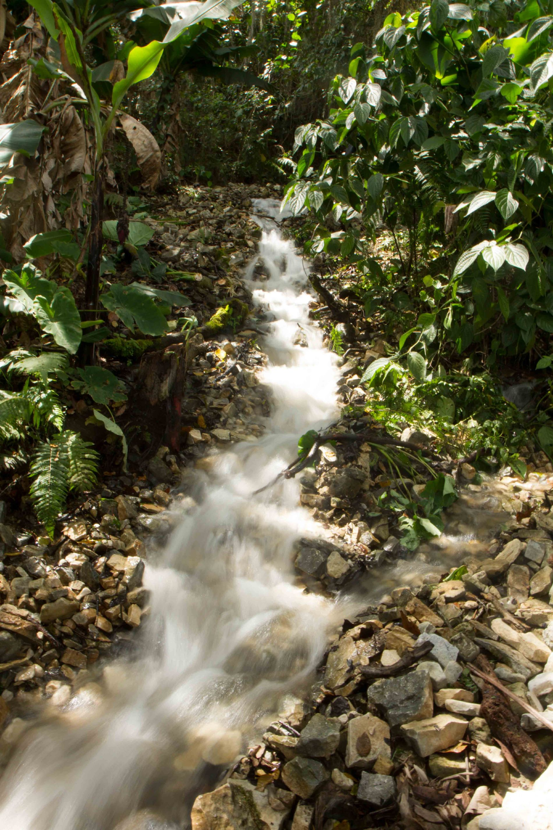 CONTRA EL HAMBRE Y LA POBREZA EN LA RESERVA DE BIOSFERA TRANSFRONTERIZA ENTRE REPÚBLICA DOMINICANA Y HAITÍ
